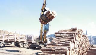 Wood International Ltd