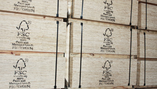Wood International Ltd Plywood